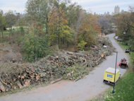 This Nov. 7, 2012 photo provided by the Central Park Conservancy shows limbs and trunks of trees that were destroyed or damaged by Superstorm Sandy stacked along Central Park&#39;s 102nd Street cross drive in New York. Experts say Sandy&#39;s winds took out more trees in the neighborhoods, parks and forests of New York and New Jersey than any previous storm on record. Nearly 10,000 were lost in New York City alone. (AP Photo/Central Park Conservancy)