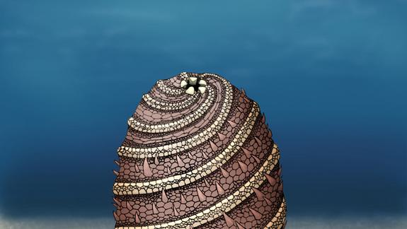 Bizarre 500-Million-Year-Old Creature Unearthed