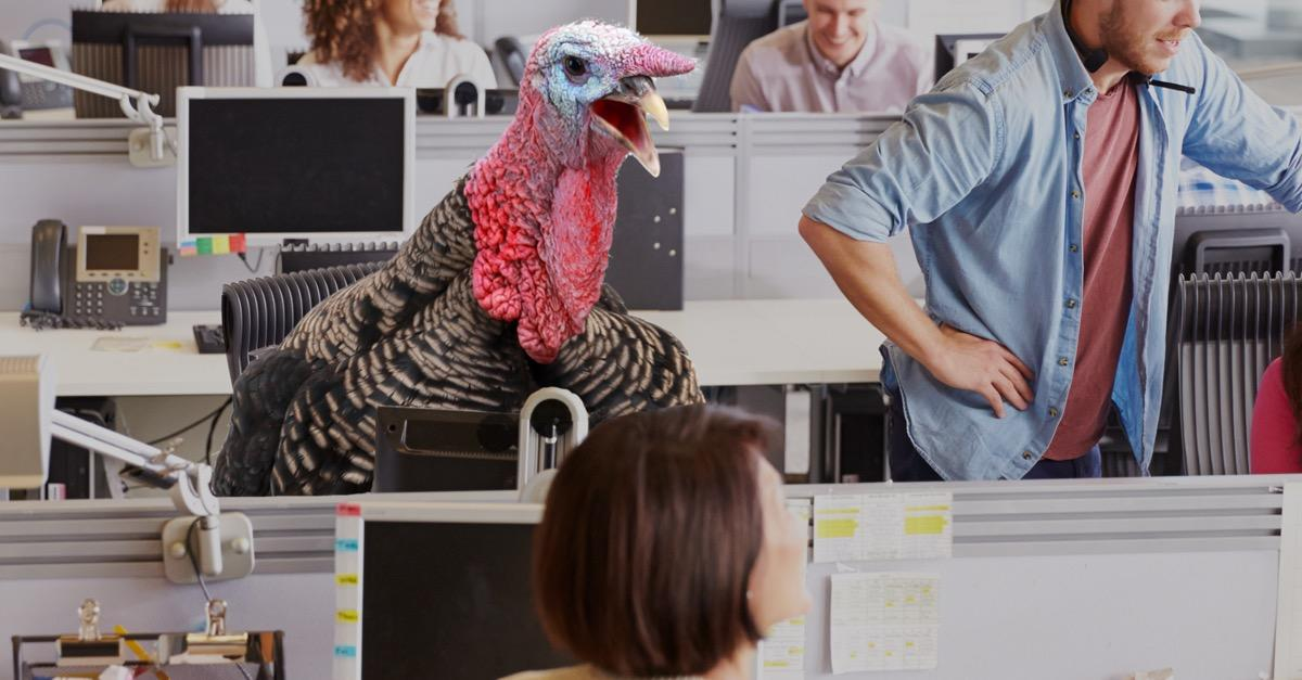 Don't be a turkey. Rate your company today!