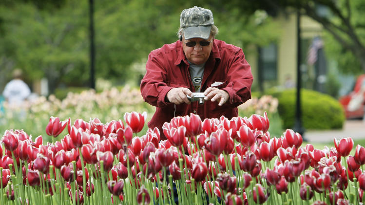 FILE - This May 6, 2010 file photo shows Bud Moe, of Barron, Wisc., takeing pictures of tulips on display during the annual Pella Tulip Time festival in Pella, Iowa. The bloom season is one of a number around the country this spring celebrating flowers in season.  (AP Photo/Charlie Neibergall, file)