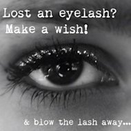 Lost Lashes