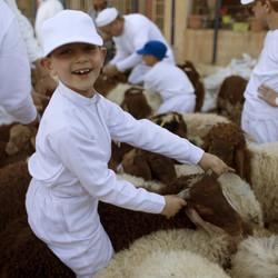 Ancient Samaritan Sect, Straddling Israel and Palestine, Celebrates Passover On West Bank Hilltop