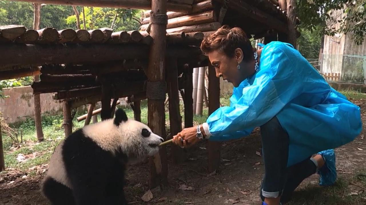 'GMA' Travel Diary: Robin Roberts Takes In the Sights and Culture of China