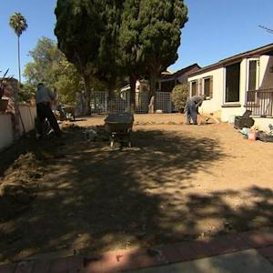 California sod businesses struggle in drought