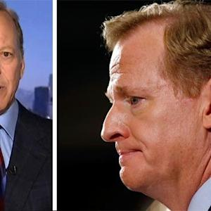 Jim Gray: Goodell must protect public confidence in NFL