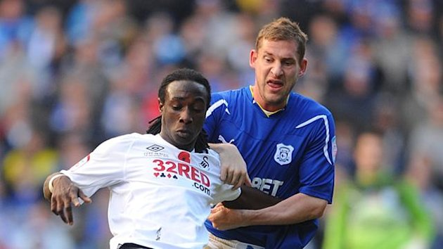 Swansea City's Marvin Emnes (left) and Cardiff City's Gabor Gyepes battle for the ball