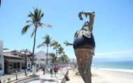 Puerto Vallarta Beach (Crai S Bower)