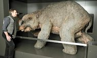 Graveyard Of Rhino-Sized Mega-Wombats Found