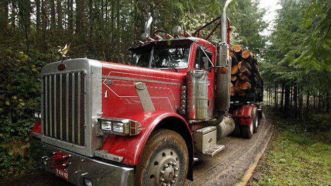 """FILE - In this Nov. 30, 2012, file photo, a loaded logging truck heads down the road in the forest near Banks, Ore.  While the looming fiscal cliff dominates political conversation in Washington, some Republicans and business groups see signs of a """"regulatory cliff"""" they say could be just as damaging to the economy. In recent weeks, the Environmental Protection Agency has proposed rules to scale back mercury emission limits for new power plants and deal with runoff from logging roads. (AP Photo/Don Ryan, File)"""