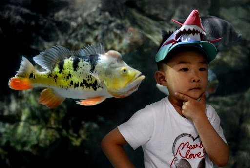 ~~The boy and the fish~~ 000-Del6124254-jpg_141820