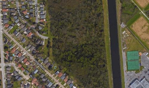 There is a Vast, Swampy Forest in Gentilly