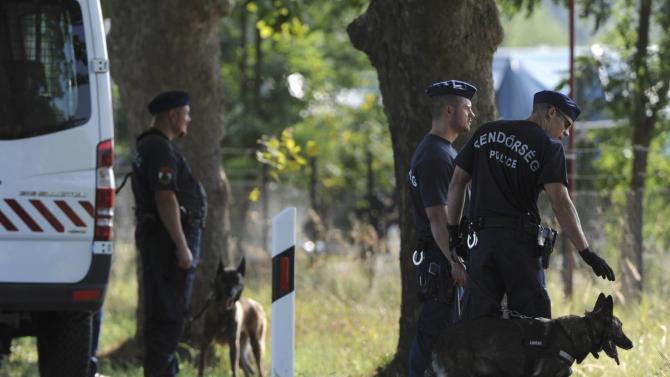 Riot police with guard dogs stand in front of a migrant reception centre in Roszke