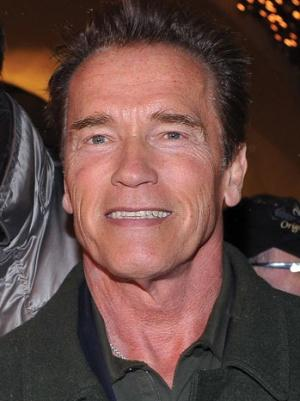 Arnold Schwarzenegger Sells Bodybuilding Drama 'Pump' to Showtime (Exclusive)