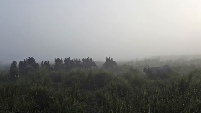 """In this Monday, Dec. 3, 2012 photo, tourists watch a one-horned rhinoceros inside the Kaziranga National Park, a wildlife reserve that provides refuge to more than 2,200 endangered Indian one-horned rhinoceros, in the northeastern Indian state of Assam. Even in this well protected reserve, where rangers follow shoot-to-kill orders, poachers are laying siege to """"Fortress Kaziranga,"""" attempting to sheer off the animals' horns to supply a surge in demand for purported medicine in China that's pricier than gold. A number of guards have been killed along with 108 poachers since 1985 while 507 rhino have perished by gunfire, electrocution or spiked pits set by the poachers, according to the park.  (AP Photo/Anupam Nath)"""