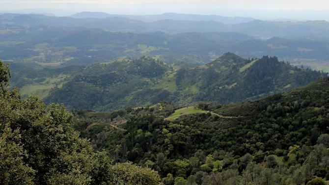 In this photo taken March 25, 2013 shows a view from Mt. St. Helena along a hiking trail in Robert Louis Stevenson State Park near Calistoga, Calif. The hike is one of several free activities visitors to the Napa Valley can enjoy. (AP Photo/Michelle Locke)