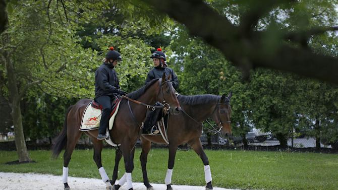 Kentucky Derby winner Orb, left, with exercise rider Jennifer Patterson aboard, is escorted to the track by Anna Martinovsky at Pimlico Race Course in Baltimore, Wednesday, May 15, 2013. The Preakness Stakes horse race is scheduled to take place May 18. (AP Photo/Patrick Semansky)