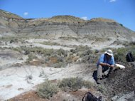 Geochronologist Paul Renne collects a volcanic ash sample from a coal bed within a few centimeters of the dinosaur extinction horizon. A study by Renne and colleagues confirmed the link between the Chicxulub asteroid impact and dinosaur extinc