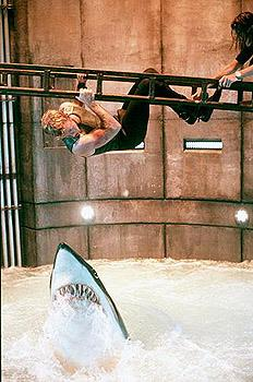 Carter Blake ( Thomas Jane ) dangles precariously above a vicious shark in Warner Brothers' Deep Blue Sea