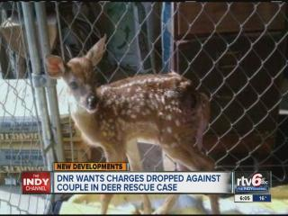 Indiana Department of Natural Resources asks that charges be dismissed in Dani the deer flap