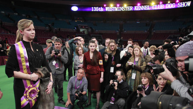 Handler Angela Lloyd poses for photographs with Hickory, a Scottish deerhound, after Hickory won best in show at the 135th Westminster Kennel Club Dog Show on Tuesday, Feb. 15, 2011, at Madison Square Garden in New York. (AP Photo/Frank Franklin II)