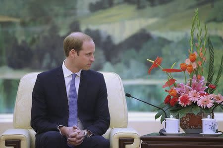 Britain's Prince William meets Chinese President Xi Jinping at the Great Hall of the People in Beijing