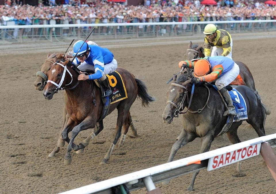 This photo released by the New York Racing Association shows Alpha, left, with Ramon A. Dominguez up  and Golden Ticket, right, with David Cohen up finishing in a Dead Heat for The Travers Grade I at Saratoga Race Couse, N.Y Saturday Aug. 25, 2012. (AP Photo/New York Racing Association)