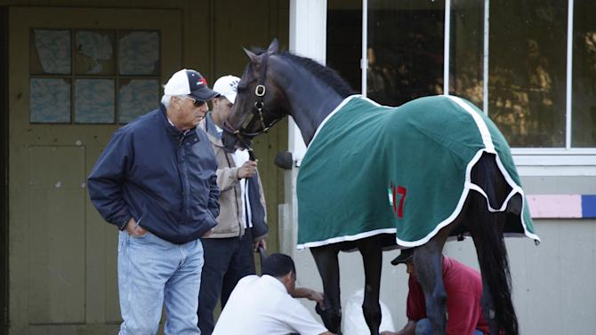 Preakness winner Oxbow is watched by trainer D. Wayne Lukas after a light workout, Tuesday, June 4, 2013 at Belmont Park in Elmont, N.Y. Oxbow is entered in Saturday's Belmont Stakes horse race. (AP Photo/Mark Lennihan)