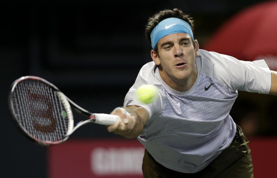 Del Potro beats Baghdatis at Japan Open