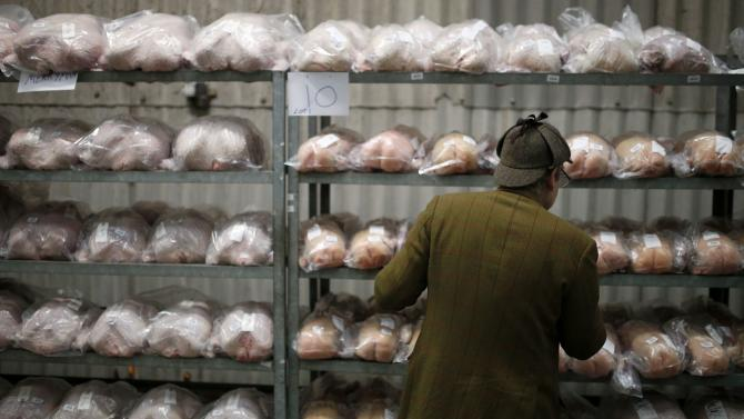 A man looks at shelves full of turkeys ahead of the Turkey and dressed poultry auction at Chelford Market