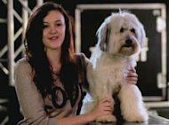 BGT Pudsey Signs £100k Book Deal