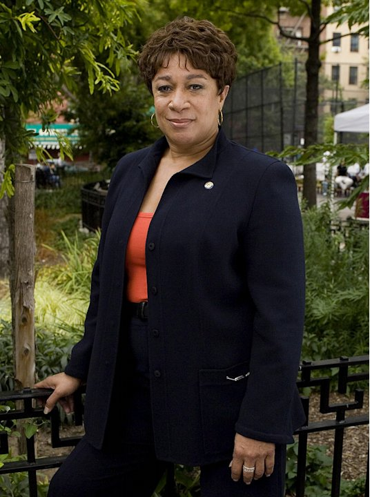 S. Epatha Merkerson stars as Anita Van Buren in Law &amp; Order on NBC. 