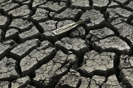 California governor orders statewide water cutbacks to combat drought