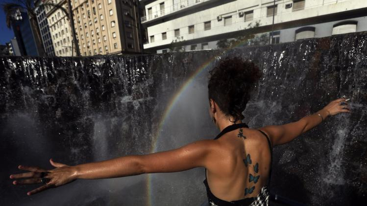 A demonstrator reacts at a fountain that emulates the Iguazu Falls during a rally commemorating the 12th anniversary of the social and economic crisis that led to Argentine former President Fernando De la Rua's resignation, in Buenos Aires