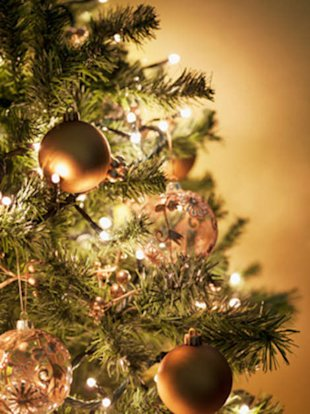 Smart tips for organizing and protecting your ornaments for next year