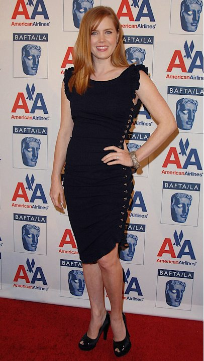 18th Annual BAFTA/LA Britannia Awards 2009 Amy Adams