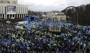 Supporters of Ukrainian President Yanukovich and the Party of the Regions participate in a demonstration in central Kiev