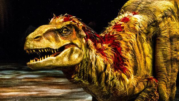"""This image released by Boneau/Bryan-Brown shows a lifelike dinosaur, part of the """"Walking with Dinosaurs, the Arena Spectacular,"""" in New York. The show, based on an award-winning BBC Television series, travels 200 million years from Triassic to the Jurassic and Cretaceous periods, and features 10 species of dinosaur. It is produced by Global Creatures, the Australian company behind the new musical """"King Kong,"""" the Tony Award-winning ''War Horse"""" and """"How To Train Your Dragon."""" (AP Photo/Boneau/Bryan-Brown, Patrick Murphy)"""