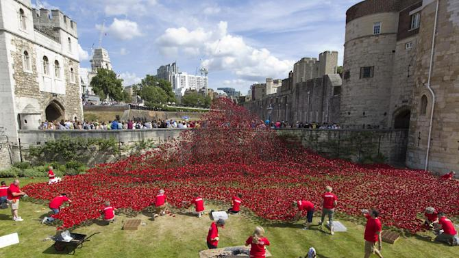 "Volunteers install porcelain poppies as part of the art installation ""Blood Swept Lands and Seas of Red"" at the Tower of London."