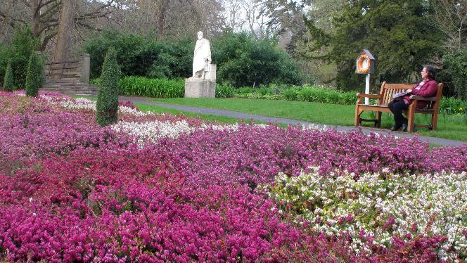 This March 23, 2012 photo shows Dublin resident Catherine Heaney, 45, sitting near a field of blooming heather and a statue of Socrates in the National Botanic Gardens in Dublin, Ireland.  The gardens, founded in 1795, are home to more than 300 endangered plant species.  (AP Photo/Shawn Pogatchnik)
