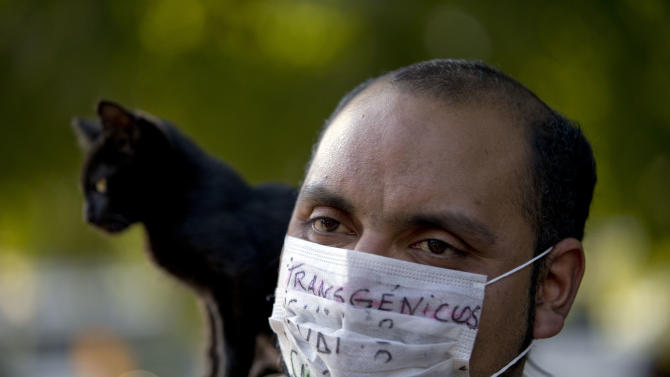 "A man with a cat on his shoulder wears a mask covered by the words in Spanish ""Transgenic, cancer/death"" as he protests the use of genetically modified food near the offices of U.S.-based seed giant Monsanto, in Buenos Aires, Argentina, Saturday, May 25, 2013. Activists are taking part in a global protest ""March Against Monsanto,"" demanding a stop to the use of agrochemicals and the production of genetically modified food, which according to them has harmful health effects, causing cancer, infertility and other diseases. Marches and rallies against seed giant Monsanto were held across the U.S. and in dozens of other countries Saturday. (AP Photo/Natacha Pisarenko)"