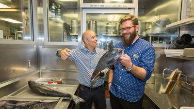 LA's Michael Cimarusti Launches Sustainable Dock-to-Dish Seafood Purveyor