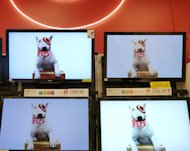 <p>               In this Feb. 20, 2012 photo, flat screen televisions  are displayed at Target in Methuen, Mass. Target Corp. is reporting a 5.2 percent drop in earnings for the fourth quarter, as the discounter pushed big discounts to get tight-fisted shoppers to buy during the holiday season.  (AP Photo/Elise Amendola)