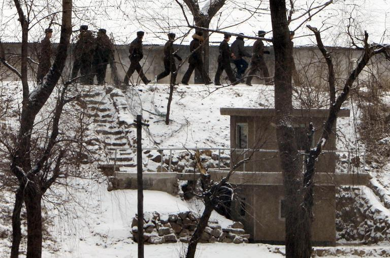 Dogs ripped kids to pieces in N.Korean camp: ex-guard