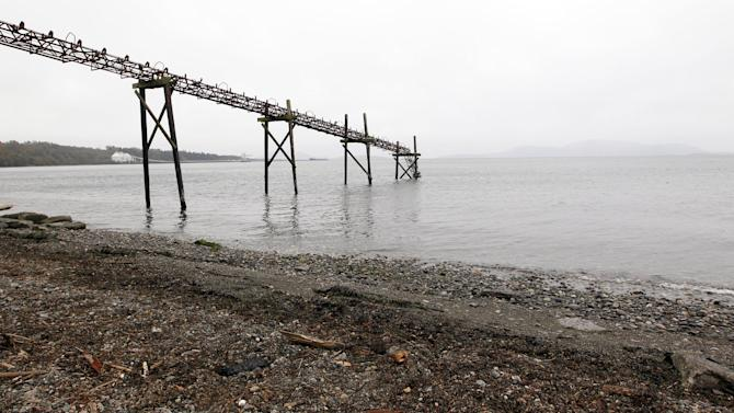 In this photo taken Oct. 23, 2012, a dilapidated structure is seen jutting out into the Strait of Georgia along the beach just south of the location of a proposed coal exporting terminal in Ferndale, Wash., just north of Bellingham, Wash. In the distance behind are an existing aluminum plant and oil refinery. The progressive college town of Bellingham is at the center of one of the fiercest environmental debates in the region: should the Northwest become a hub for exporting U.S. coal to Asia? A proposal to build one of as many as five coal terminals here has divided the town, pitting union and businesses that welcome jobs against environmentalists who worry about coal dust and greenhouse gas emissions. A trade group is running TV ads touting the projects, while numerous cities such as Seattle and Portland are opposing coal trains through their communities. (AP Photo/Elaine Thompson)