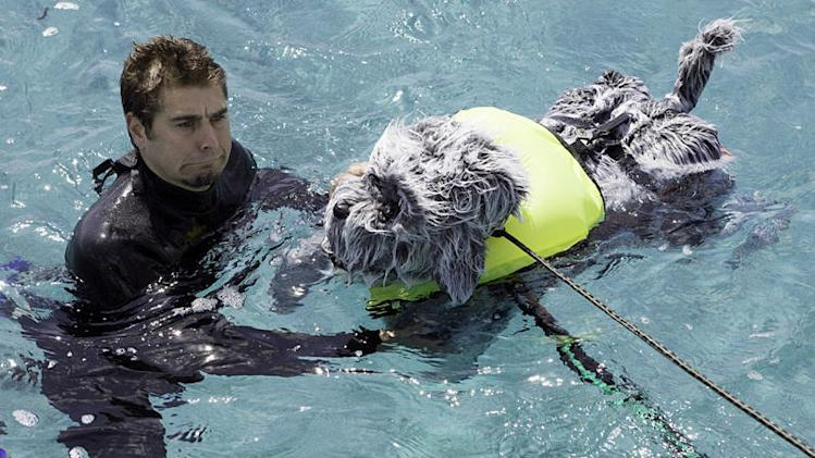 Tory Belleci lends a hand while RoboDog takes its maiden voyage as seen in MythBusters episode for Shark Week 2008.