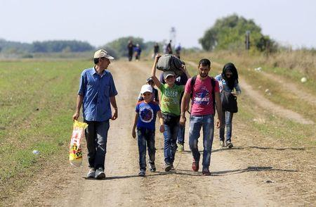 Migrants walk along a road after crossing into Hungary from the border with Serbia near Roszke, Hungary
