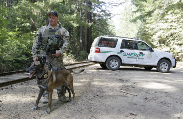 Mendocino County sheriff's deputy Joey DeMarco stands watch with his patrol dog Barry alongside railroad tracks as the search for murder suspect Aaron Bassler continues in Northspur, Calif., Friday, S