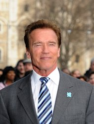 Arnold Schwarzenegger plays a veteran cop in The Last Stand