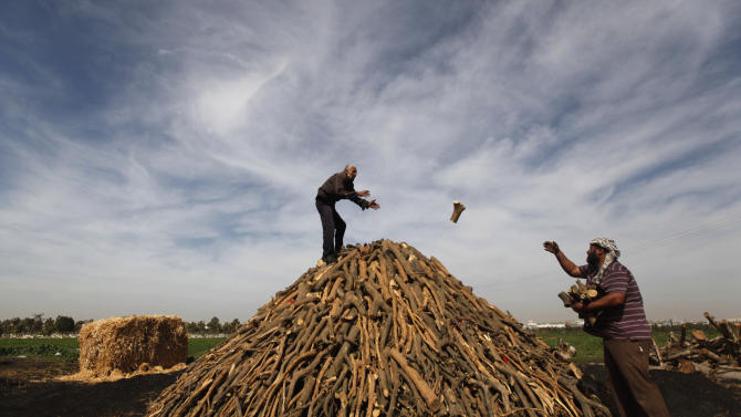 AP PHOTOS: Gazans turn wood into charcoal