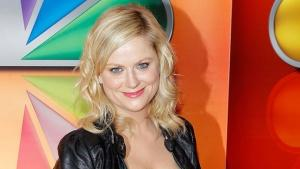Amy Poehler and Her Brother Form Production Company, Team for Swedish TV Series